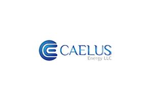 Caelus energy llc